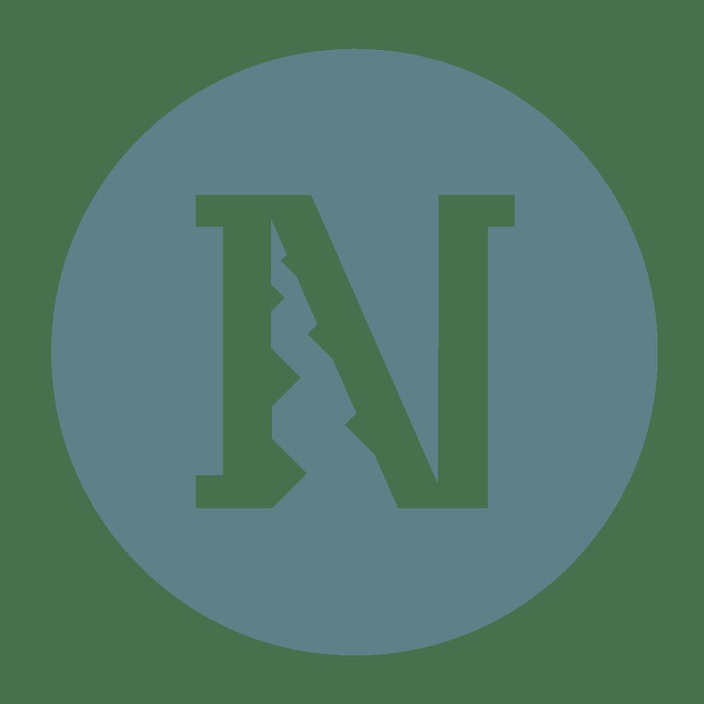 Logo_Colored_Transparentbackground